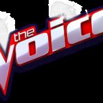 stem van de klant voice of customer